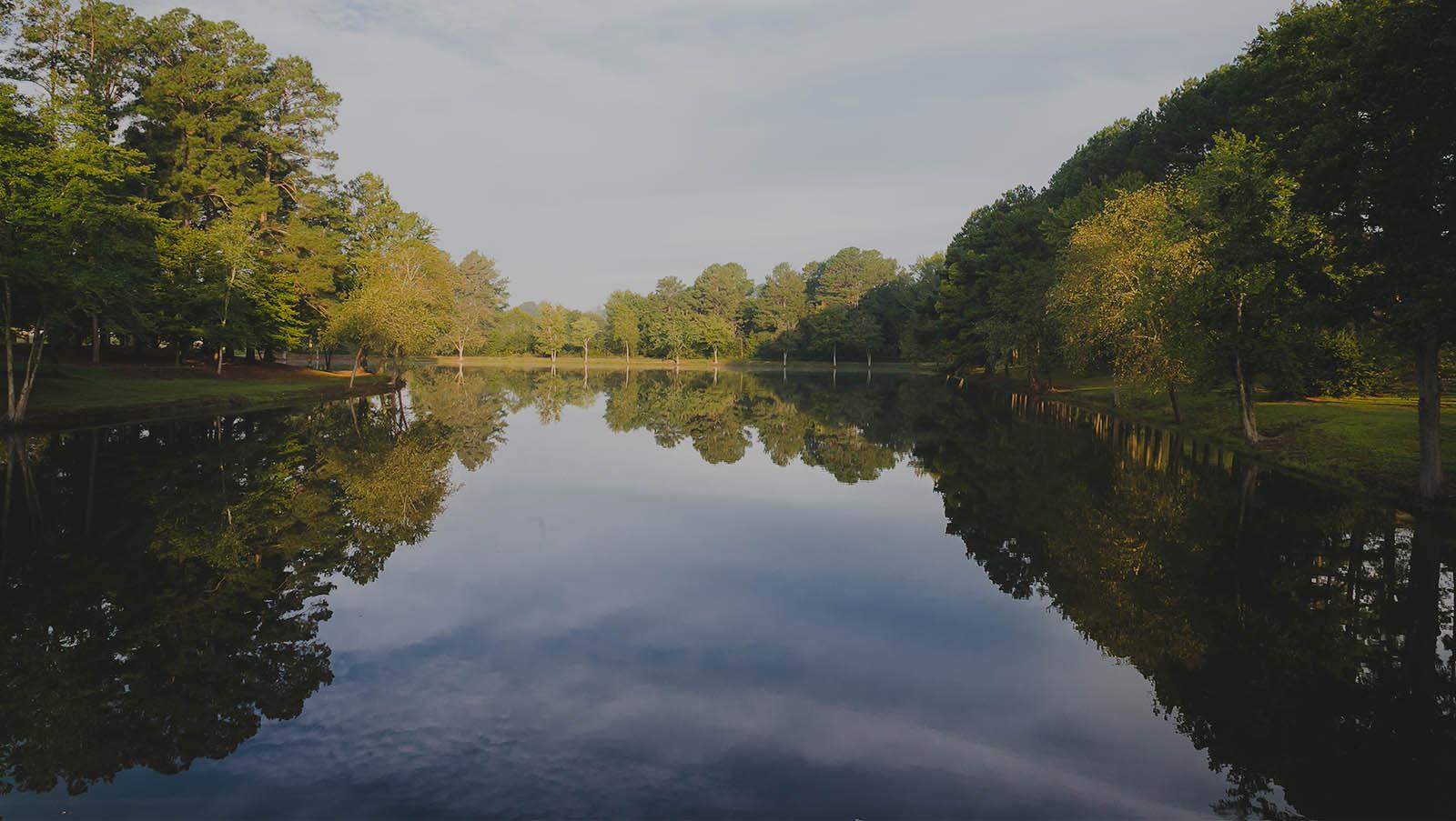 Pond Image