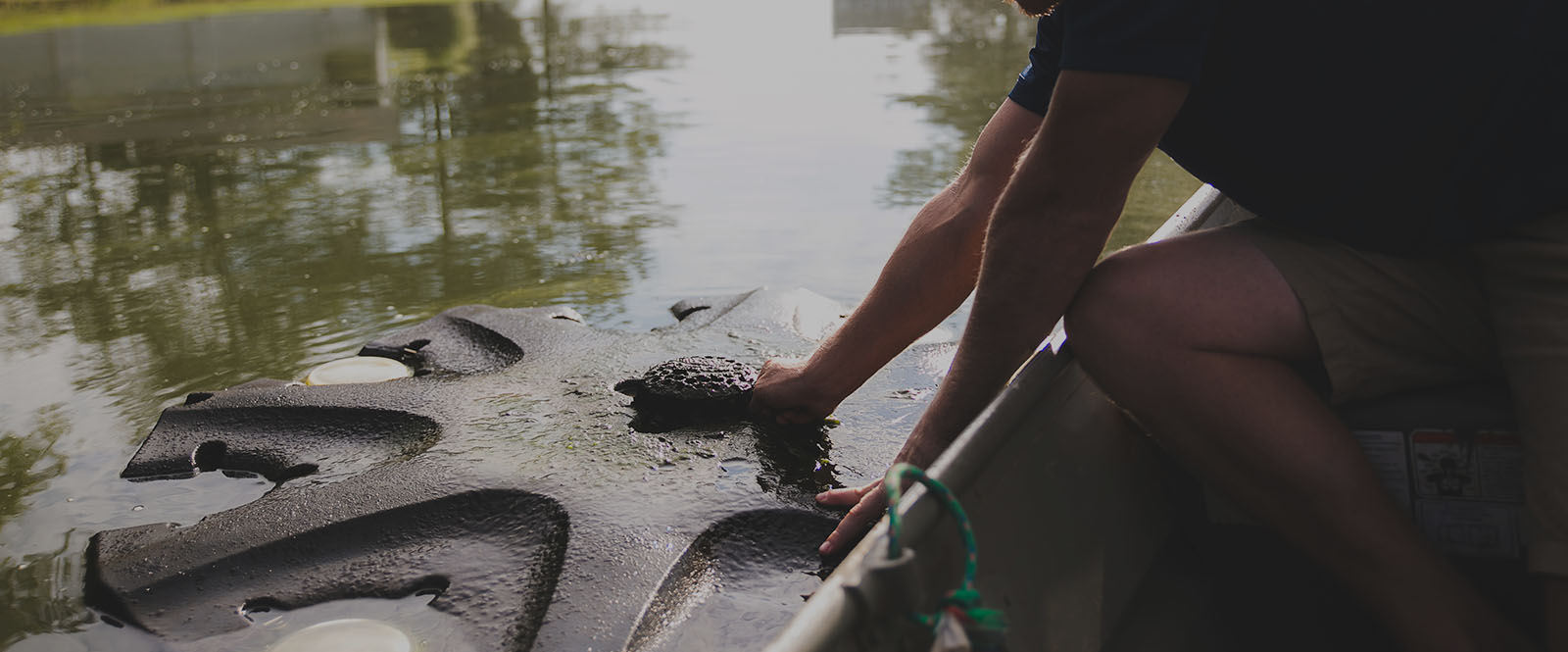 aquatic services charlotte, lake maintenance charlotte, pond maintenance charlotte